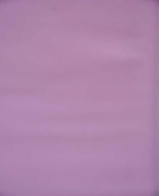 117 Lilac