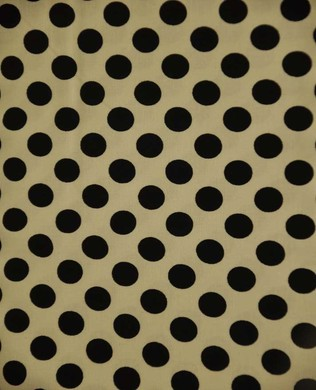 1492 Dalmatian Dot