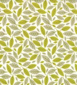 16702 21 Ochre Beech Leaf