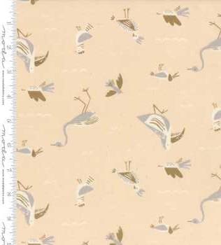 16711 12 Coral Seabirds