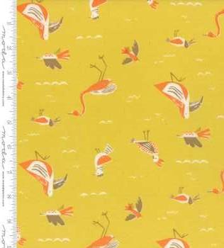 16711 17 Sunshine Seabirds