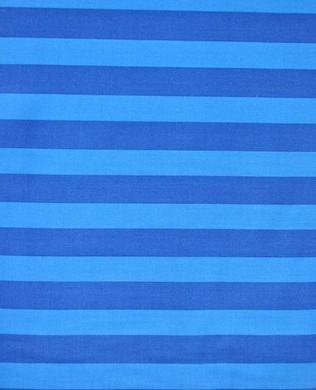 17031 4 Blue Stripe
