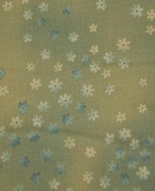 17621 Blue Meadow