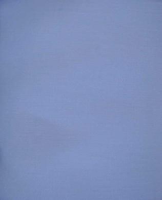 17901 White
