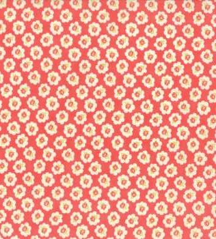 20281 12C Apple Red Floral