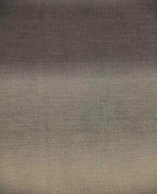 2046 01 Gray Scale