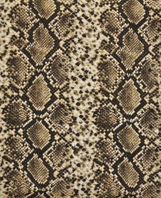 22842AE Charcoal Snakeskin