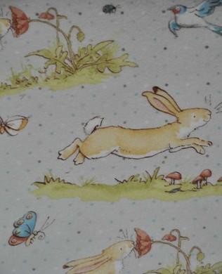 2321 61 Brown Spot Bunny