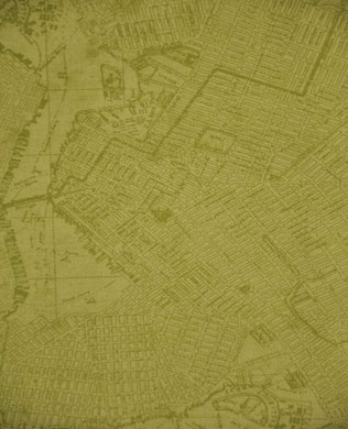 23442 City Map Olive