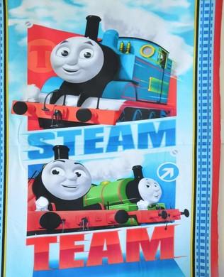 25927 B Thomas Panel