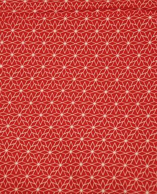 304420 Geom Star Red