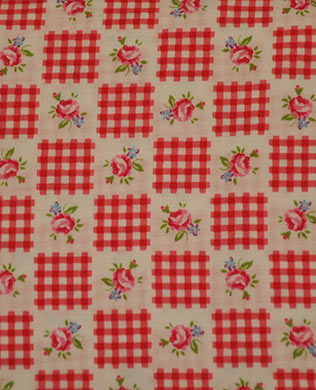 3084430 Red Gingham Check