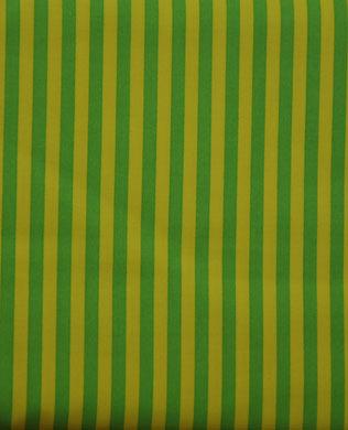 3584 Stripe Mint