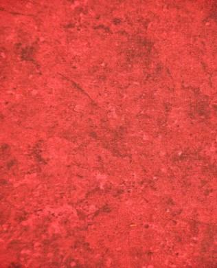39120 26 Team Spirit Red