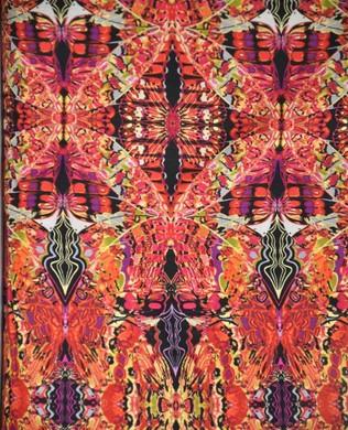 4310 28 Pink Orange Wings