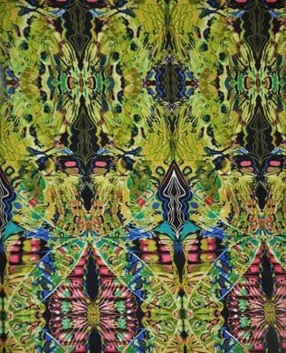4310 44 Lime Wings