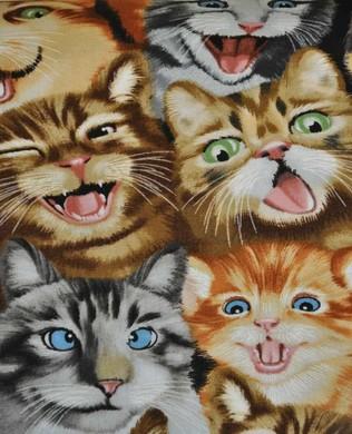 5315A Cat Natural