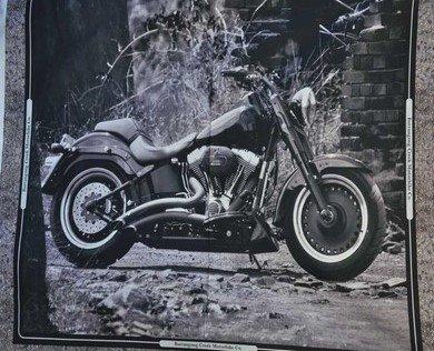 6036 3 Motorbike Panel B and W