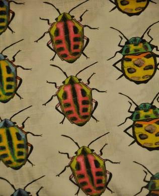 6445 Bugs