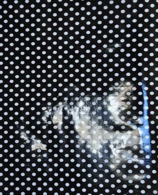 88312 12O Laminate Dot Black