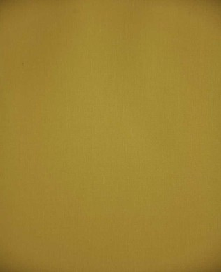 9900 31 Baby Yellow