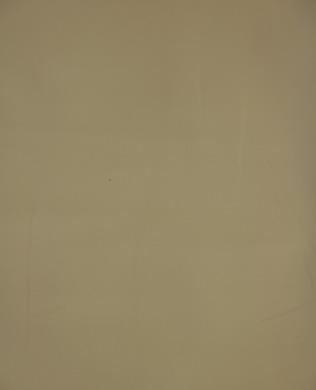 9954 11 White