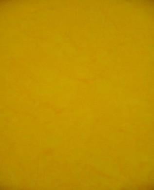 BC01 Bright Yellow