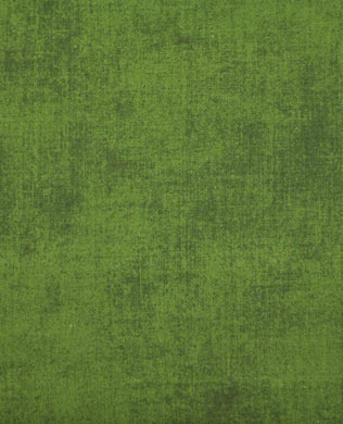C20047 Mountain Green