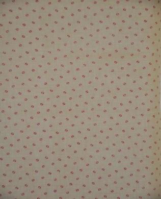 C4985 Pink Daisy