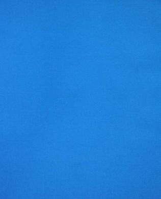 CSFSESS Blue