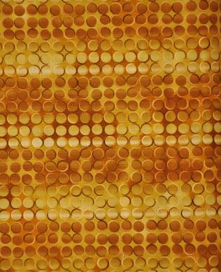 D11401133 Gold Circles
