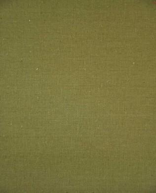 LILS 009 Olive