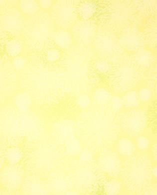 Lime-FE524
