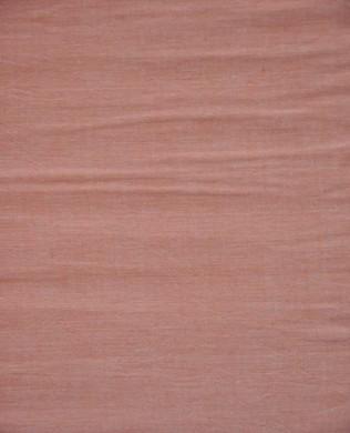 SC079 Apricot