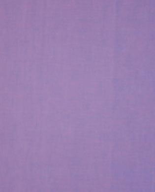 SC14 - Lavender