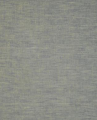 SC19 - Lichen