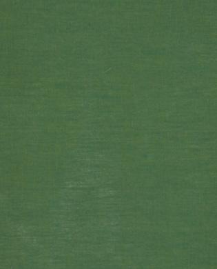 SC56 - Moss
