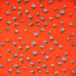 50899 10 Orange Strawberries