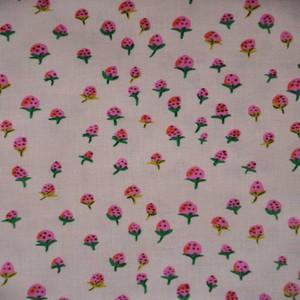 50899 2 Blush Strawberries