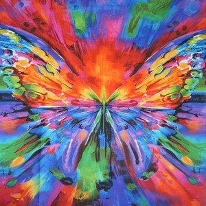 6550A Butterfly Panel