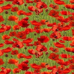 7117 D Green Poppies