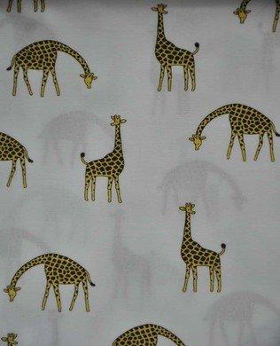 850229 21 White Giraffes