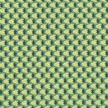 18094 270 Meadow Berries
