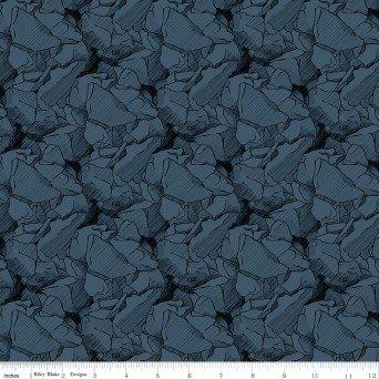 C9101 CAT Rocks Blue