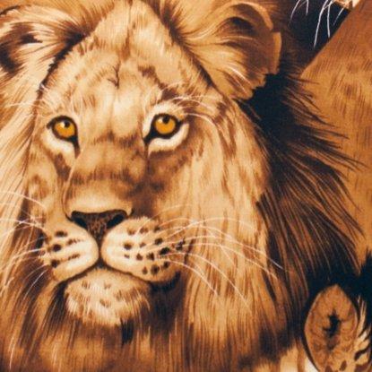 2883B Brown Lion Eyes