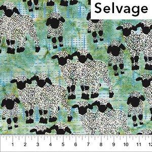 80398 060 Gandiegow Lambs
