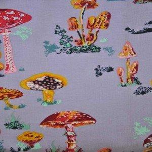 NL002  Mushrooms Heather