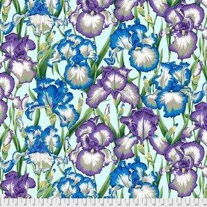 PJ105 COOL Bearded Iris