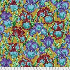 PJ105 OCHRE  Bearded Iris