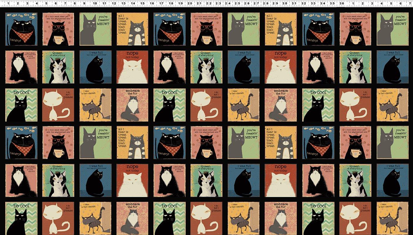 Black Snarky Cats